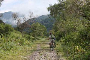 Senderos en mountainbike