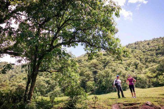 trekking finca las costas salta 531x354 - Trekking Yungas Corto