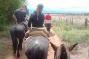cabalata salta chicoana 180x120 - Horseback Riding Half day with BBQ and Transfer