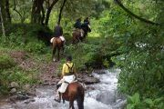 cruce rio caballo 180x120 - Horseback Riding Full Day with BBQ and Transfer